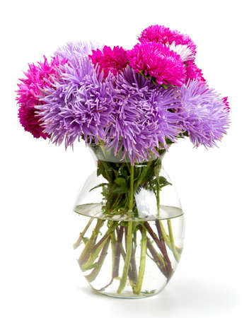 bunch of flowers: aster flowers isolated on white background