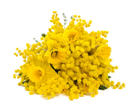 bouquet of mimosa and narcissus flowers isolated on white photo