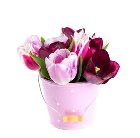 bouquet of tulips in a bucket isolated on white photo