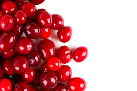 cranberry: Cranberry isolated Stock Photo