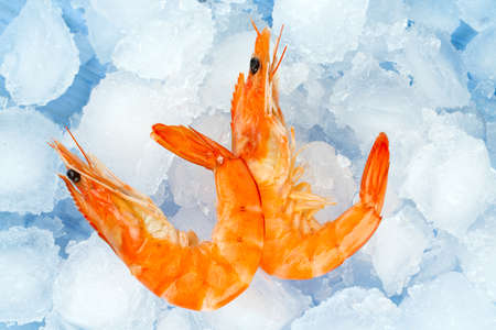 fayre: cooked shrimps on ice