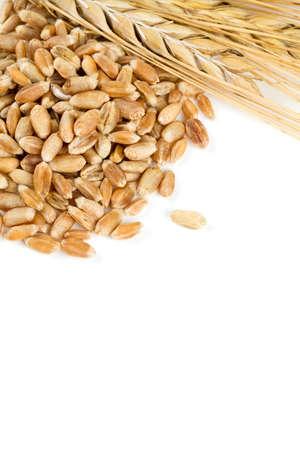 pearl barley: pearl barley isolated on white