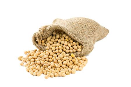 soja: habas de soja en una bolsa de aislados en blanco