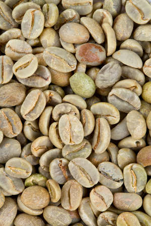 unprocessed: green coffee background
