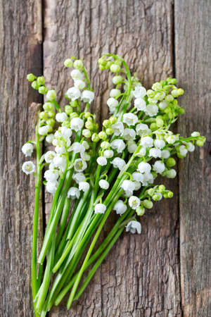 mayflower: lilly of the valley on wooden surface Stock Photo