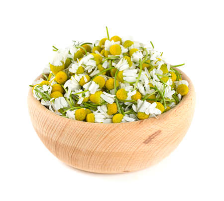 matricaria recutita: chamomile flowers in a bowl