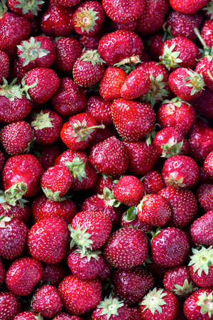 sappy: strawberries background Stock Photo