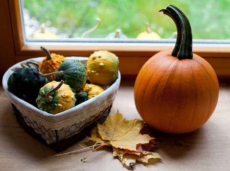 windowsill: colorful pumpkins on window-sill Stock Photo