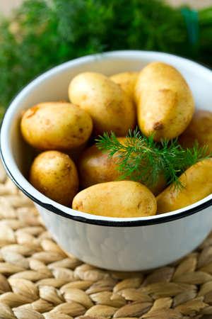 potato field: raw baby potatoes on wooden surface Stock Photo