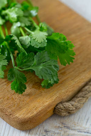 кинза: cilantro over wood Фото со стока