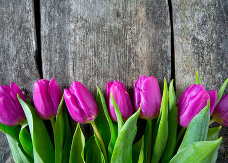 purple tulips on wooden surface