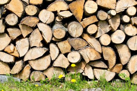 logs: fire logs