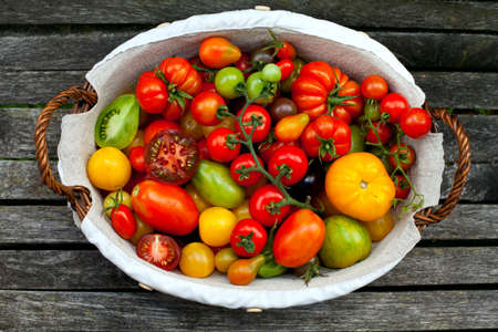 water alphabet: colorful tomatoes in basket