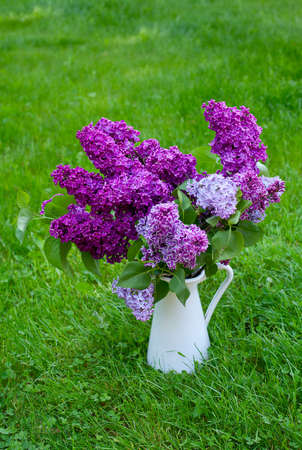 lilac bouquet on green grass
