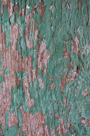 texture of an old weathered grungy wood