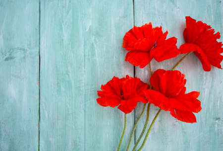 red poppy flowers on wooden surface