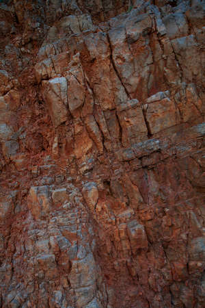 gray texture: stone texture
