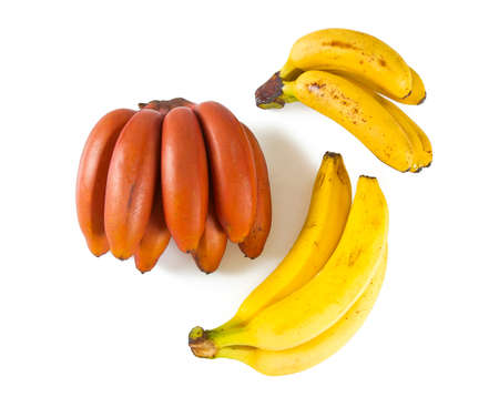assorted bananas on the white background Stok Fotoğraf - 86412750