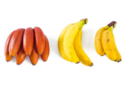assorted bananas on white background