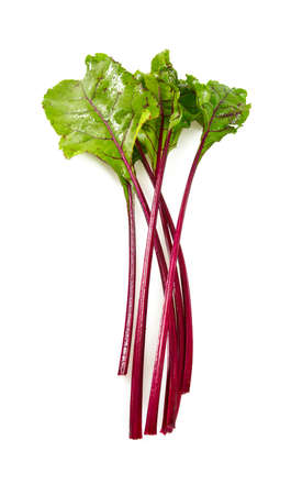 beetroot leafs isoalted on white