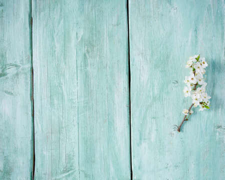 spring blossoms on wooden surface