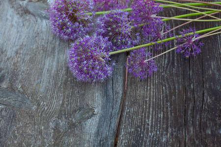 alium flowers on wooden surface Stock fotó