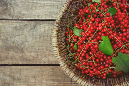 red currant on wooden surface