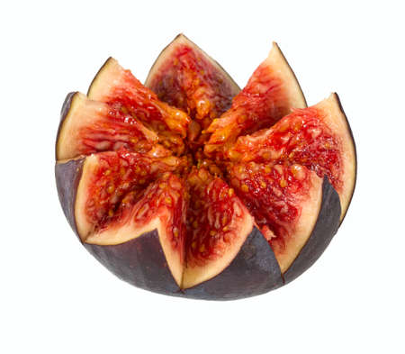 fig flower isolated on white