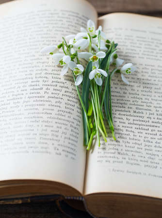 snowdrop on an old book