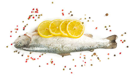 river trout isolated on white background