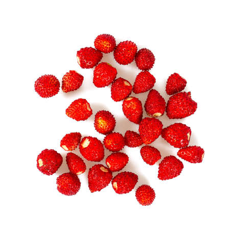 wild strawberries isolated on white