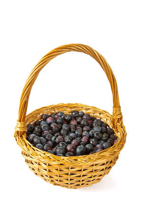 fresh blueberries in a basket isolated on white background