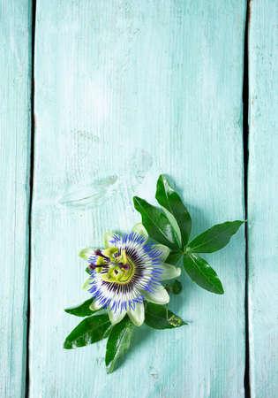 fleurs de la passion sur une surface en bois turquoise Banque d'images