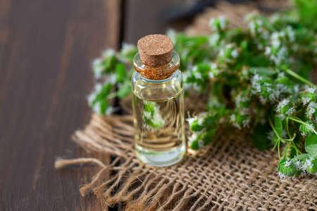 essential oil with fresh marjoram herb 写真素材