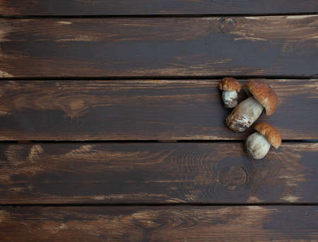 fresh mushrooms on wooden surface