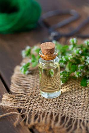 essential oil with fresh marjoram herb Zdjęcie Seryjne