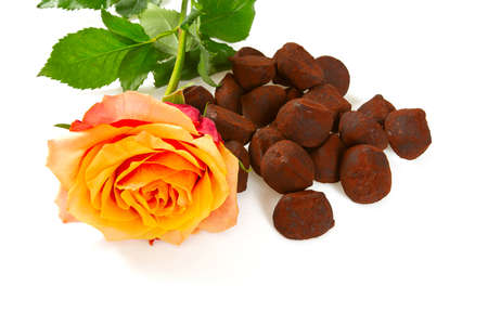 chocolate truffle candies isolated on white