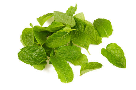 fresh mint leafs isoalted on white background