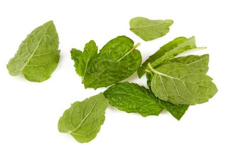 fresh mint leafs isoalted on white background Standard-Bild