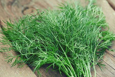 fresh herbs on wooden surface Foto de archivo