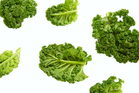 fresh kale isolated on white background Reklamní fotografie