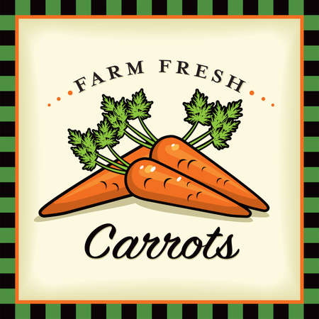 Farm Fresh Carrots Vector Illustration and Typographic Retro Sign