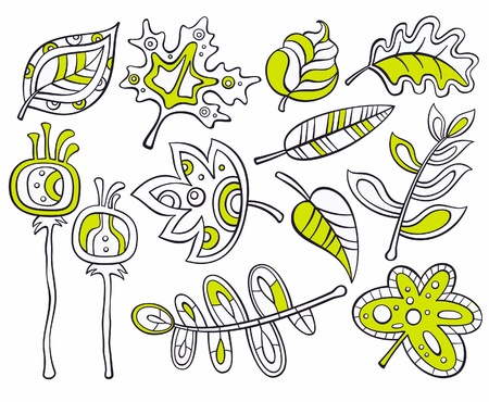 Vector collection of sketches - decorative leaves