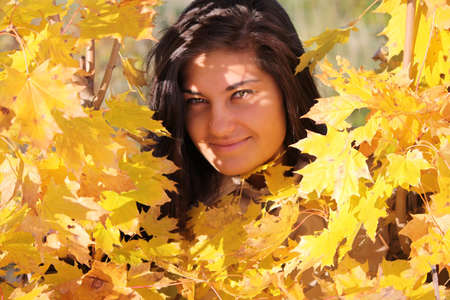 young beautiful woman with golden maple photo