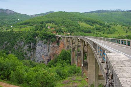 tara: Long bridge over Tara river in Montenegro