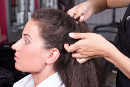 young beautiful brunette woman in hairdressing salon Stock Photo - 21223552