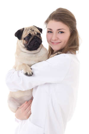 happy young woman vet holding pug dog isolated on white background photo