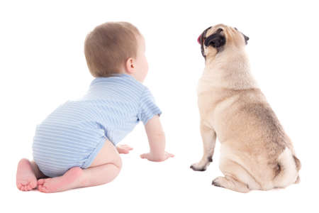 back view of baby boy toddler and pug dog isolated on white background Фото со стока