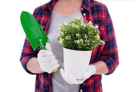 close up of potted plant and small shovel in female hands isolated on white background