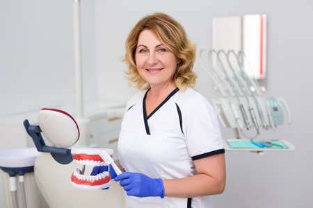 portrait of mature female dentist posing in dental clinic with artificial jaws and toothbrush